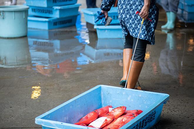 活気ある市場とキンメダイ漁。そこに流れる通奏低音。