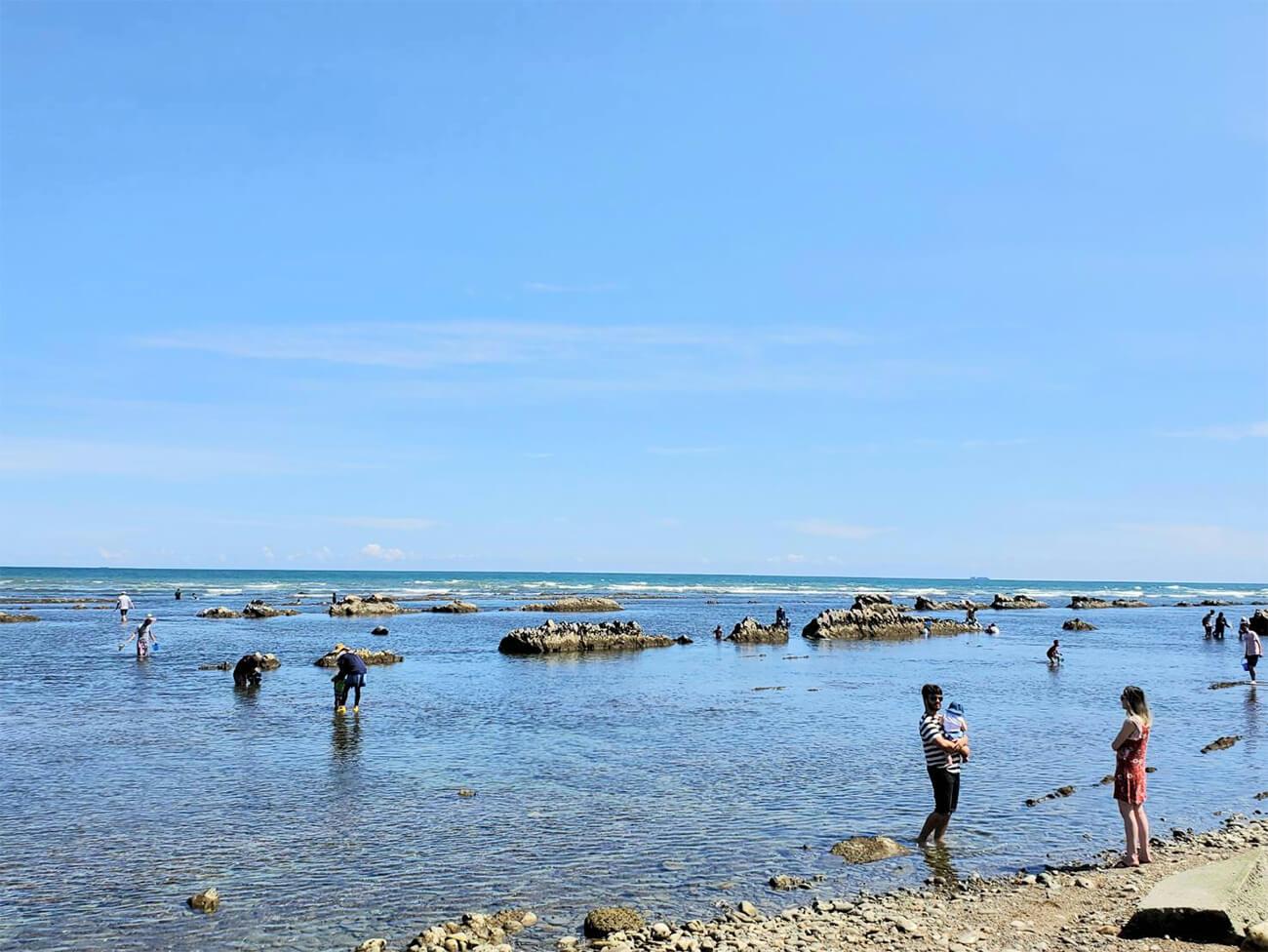 太平洋と戯れる天然の水族館