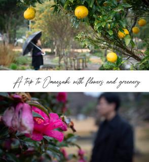 あの人の好きな場所へ― 花と緑に包まれるショートトリップ ―御前崎編